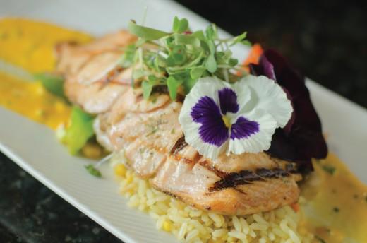 culinary arts photography